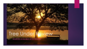 Tree Under Review Contact me for Sources