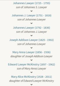 Johannes Lawyer Descendants